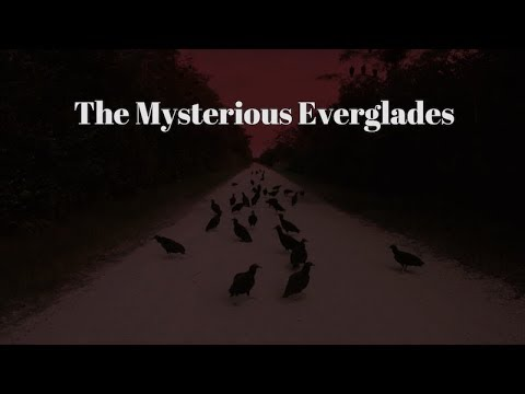 FEATURE DOCUMENTARY : The Mysterious Everglades : Abandoned Places, Lonely Backroads & The Skunk Ape