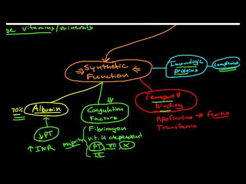 Hepatic Physiology 1: Functions of the Liver