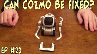 Video Can Cozmo Be Fixed?   Episode #23   #cozmoments MP3, 3GP, MP4, WEBM, AVI, FLV Juli 2018