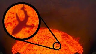 Video MYSTERIOUS Creatures Living At The BOTTOM Of The World! MP3, 3GP, MP4, WEBM, AVI, FLV Juli 2018