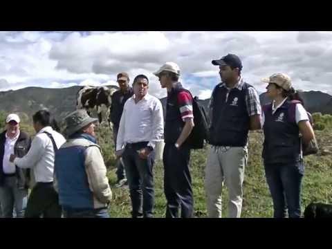 Vidéo Youtube - Proyecto de Apoyo al Sistema Financiero Agropecuario Colombiano (PASAC)