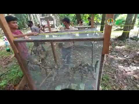 Hari Bakti Rimbawan BBKSDA Riau di TWA Sungai Dumai
