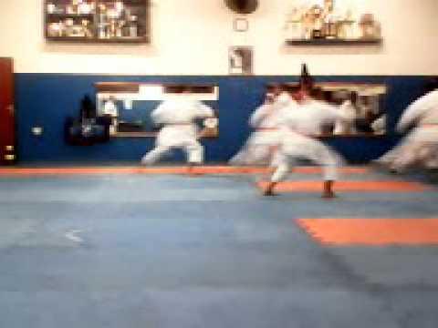 jonatan treinando karate americo brasiliense