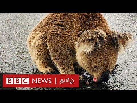 """Video - Η Αυστραλία είναι """"άρρωστη"""": Μετά τις πυρκαγιές οι αμμοθύελλες"""