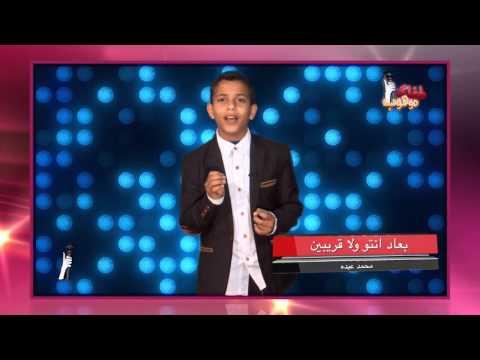 عبيدة بدير - تقيم الفنانة رنين الشعار
