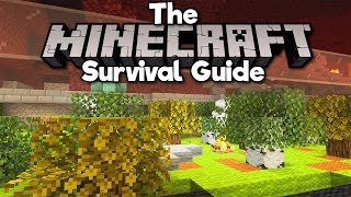 Overworld Biomes in the Nether! • The Minecraft Survival Guide (Tutorial Lets Play) [Part 193]