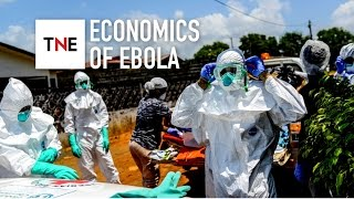 Ebola Brings West African Economies To An 'alarming' Standstill
