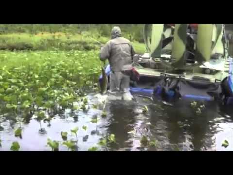 рыбалка 2016 спб видео