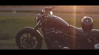 4. My 2019 Harley Davidson Iron 883