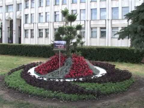 Ярославль в цвету 2013 Цветочная поляна