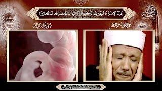 Download Video آية نزلت في الأسود بن شريق الذي ظلم النبي ﷺ يتلوها الشيخ عبد الباسط وهو يغالب دمعه . HD MP3 3GP MP4