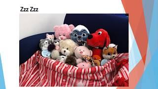 Stuffed Animal Sleepover At Mt Royal YouTube