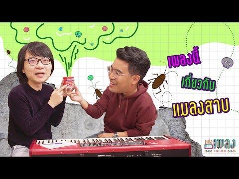 เพลงของคนเกลียดแมลงสาบ !!