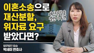 이혼소송으로 재산분할, 위자료 요구 받았다면? #이혼변호사