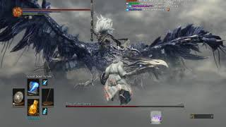Install the Mod: https://www.reddit.com/r/darksouls3/comments/6r7cdw/ds3_b... DS3 Boss Rush is...