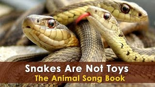 Snakes Are Not Toys | Animal Songs | Animal Rhymes For Children | Animal Song For Kids