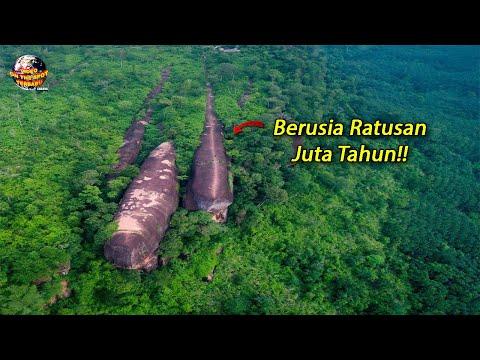Penemuan 3 Paus Zaman Purba di Tengah² Hutan // Warga Thailand Heboh!!