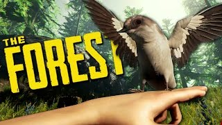 FOOD FOOD FOOD - The Forest Updated 2016 Gameplay #3