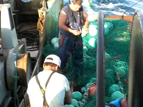 arrastão em faina de pesca