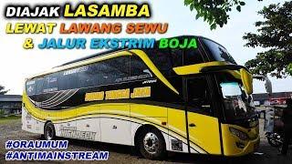 Video 2x ORA UMUM! Naik Bus STJ, muter lewat Jalur Ekstrim Boja & Lawang Sewu Kota Semarang MP3, 3GP, MP4, WEBM, AVI, FLV November 2018