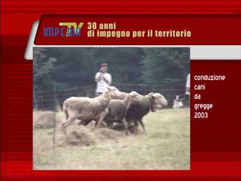 30 ANNI DI IMPEGNO : CONDUZIONE CANI DA GREGGE 2003