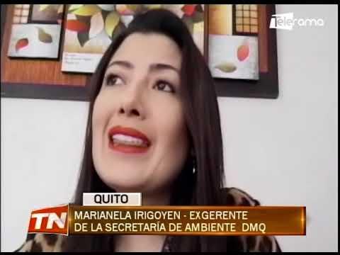 Alcalde de Quito podría enfrentar un proceso de remoción, según concejal Cevallos