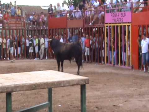 BOUS A PLA DE L'ARC 17 7 2011 GANADERIA D GERMAN VIDAL PARTE 2