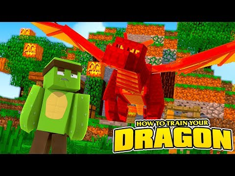 HOW TO TRAIN YOUR DRAGON #2 - WE FOUND A HUGE DRAGON!