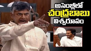 Video అసెంబ్లీలో చంద్రబాబు విశ్వరూపం | Chandrababu Naidu gets angry on YCP leaders | Telugu Trending MP3, 3GP, MP4, WEBM, AVI, FLV Juli 2019
