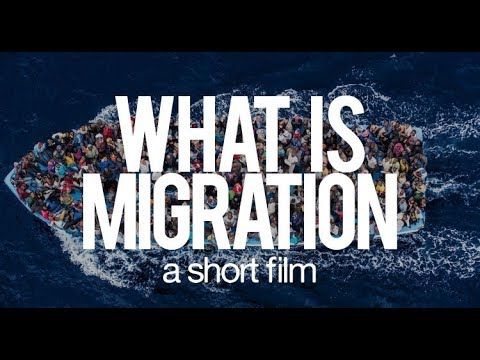 The many faces of migration. A short film.