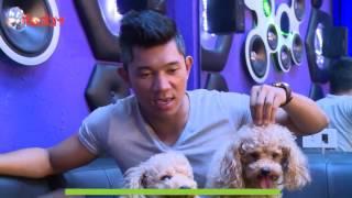 Kỳ 5: Giao lưu cùng ca sĩ Lương Bằng Quang về giống chó Poodle - Thú Cưng TV
