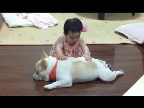 寶寶在幫汪星人按摩,但狗狗似乎不是很爽!最後竟然...