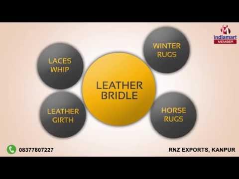 Rnz Exports