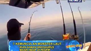 Video ON THE SPOT - 7 Kemunculan Monster Laut MP3, 3GP, MP4, WEBM, AVI, FLV Juni 2019