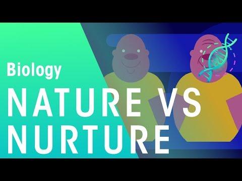 Nature vs Nurture | Genetics | Biology | FuseSchool