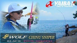 YAIBA X TV #14 「チヌスナイパーで広島湾に挑戦!」