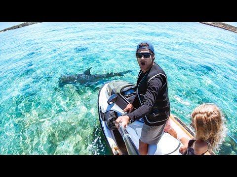 I GOT A BRAND NEW JET SKI Sea Doo Fish Pro 2019 Review | Hammerhead Shark & Ship Wreck - Ep 63 - Thời lượng: 11 phút.