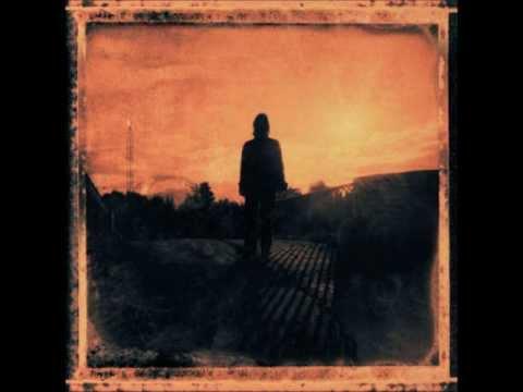 Tekst piosenki Steven Wilson - Deform To Form A Star po polsku