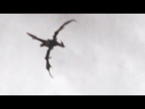 飛龍在英國天空出沒?!