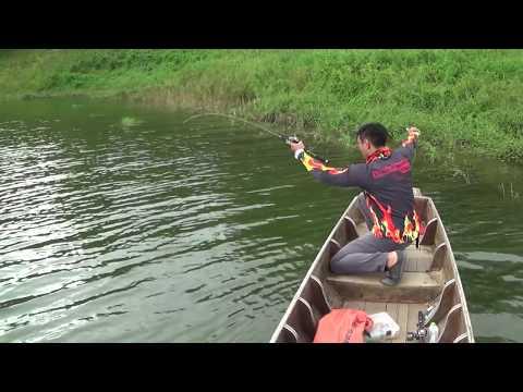 กบยาง - สั่งกบJD ใด้ที่ www.facebook.com/aurafishing.