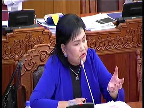 Монгол Улс 2019 онд 9 их наядын орлого олж, 11 их наядын зарлага гаргана