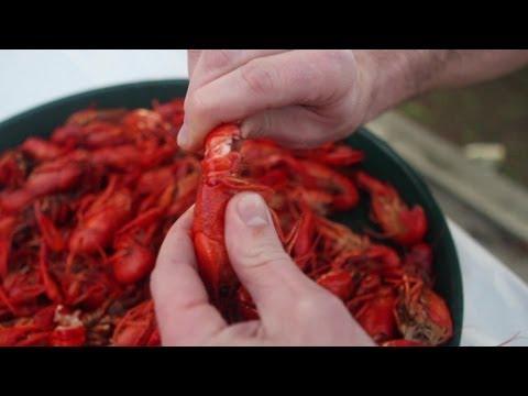 How To Eat a Crawfish (видео)