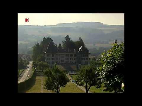 Kernschmelze in der Schweiz: Der eigene Atomreaktor ...