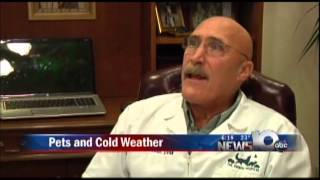 Pet Connection Extra - Cold Weather Risks To Pets