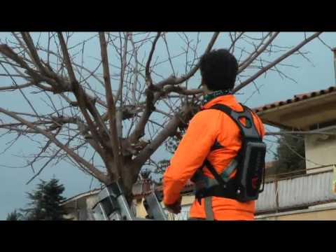 PROFESSIONAL ELECTRIC PRUNING SHEARS ARVIPO