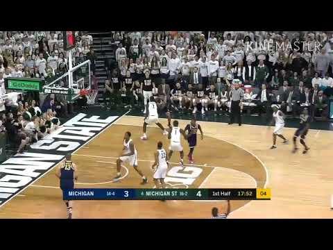Michigan vs Michigan State | 2017-2018 Basketball Season Highlights