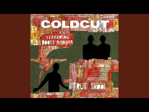 True Skool (Spank Rock mix)