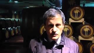 #VIDEOSUD 5 Tenuta Due Palme Agroalimentare di qualità