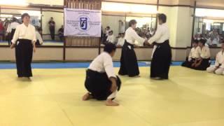 Техники айкидо демонстрируют наши гости из Японии. Ученики 1-3х данов.