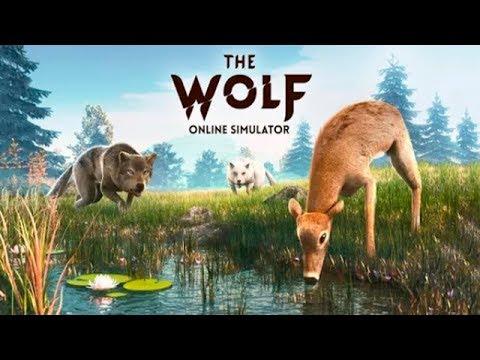 Симулятор Волка Охота На животных Битва в Стае Выживание в ПвП Игровое видео для детей Let's play